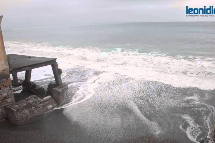 Σοροκάδα στην παραλία του Λάκκου Λεωνιδίου