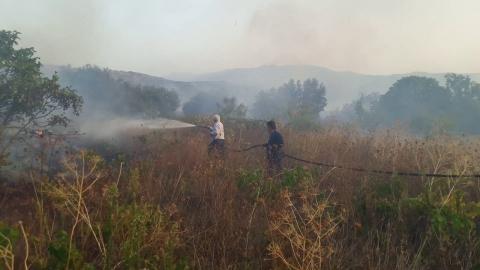Arcadiaportal.gr Τατούλης και Ρουμελιώτης στην μάχη με τις φλόγες