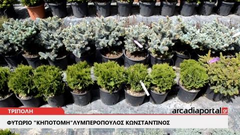 ArcadiaPortal.gr  Κηποτομή Λυμπερόπουλος η καλύτερη επιλογή για το κήπο σας
