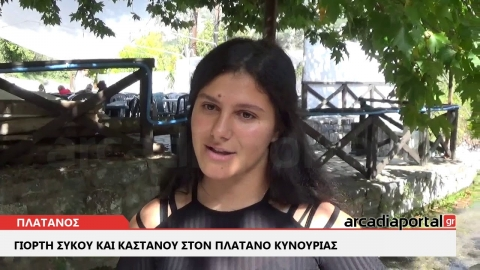 ArcadiaPortal.gr Κάστανο και σύκο κέρασαν οι Πλατανίτες