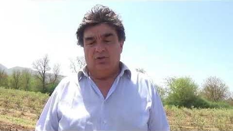 Έμπρακτη στήριξη της αγροτικής παραγωγής - Φύτευση μύρτιλλων στο Αθήναιο
