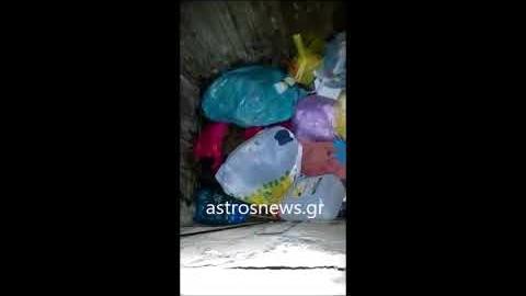 astrosnews.gr - Πέταξαν κουτβακια σε κάδο απορριμμάτων